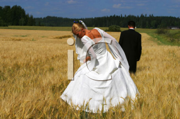 Royalty Free Photo of Newlyweds in a Field