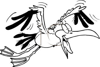 Royalty Free Clipart Image of a Seagull
