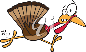 Royalty Free Clipart Image of a Frightened Turkey on the Run
