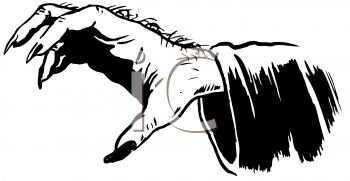 Royalty Free Clipart Image of a Claw Hand