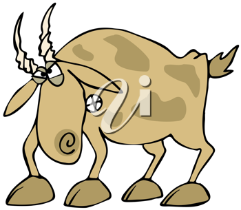 Royalty Free Clipart Image of an Angry Goat