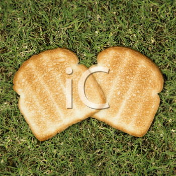 Royalty Free Photo of Two Slices of Toast on Grass