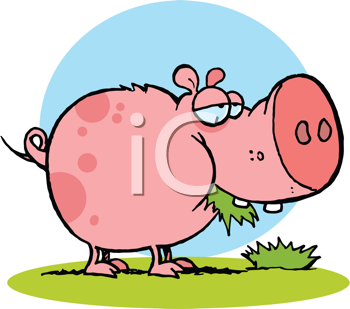 Royalty Free Clipart Image of a Pig Eating Grass