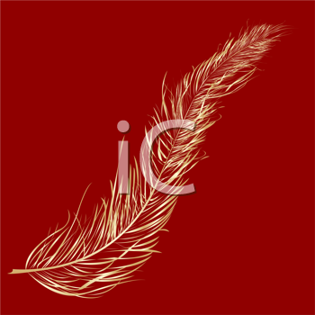 Gold feather over red background- clip art