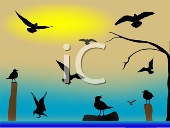 Royalty Free Clipart Image of Sea Birds