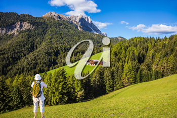 Forested mountains surrounded by green Alpine meadows. Active elderly woman-tourist with backpack photographs at Dolomites, Northern Italy. The concept of an active and eco-tourism