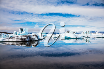 Icebergs and ice floes are reflected in the mirrored water of the ocean Bay. Summer vacation in Iceland. Ice lagoon in July