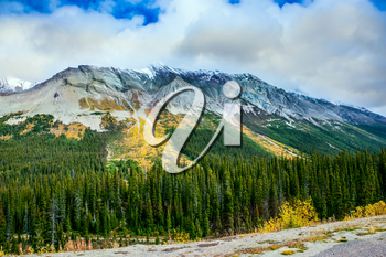 The Rocky Mountains in Canada. Dense coniferous and deciduous forests at the foot of the mountains.  The concept of active tourism