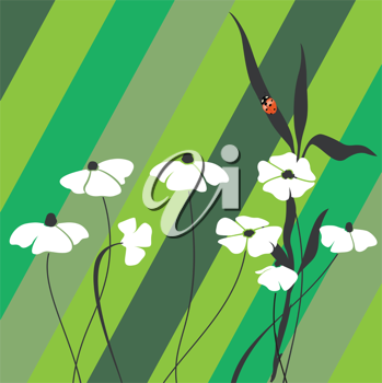 flowers and lady bug on spring card