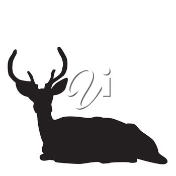 Silhouette of a sitting deer stag over white background