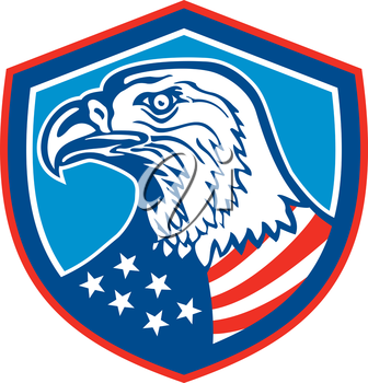 Illustration of a bald eagle head looking to the side with american stars and stripes flag on its neck set inside shield crest done in retro style.