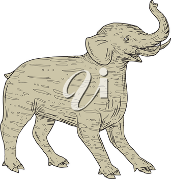 Drawing sketch style illustration of a Baku, a Chinese and Japanese Folklore tapir-like creature with elephantine tusks and trunk and with striped fur viewed from the side set on isolated white background.