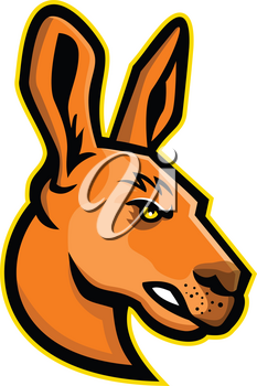 Mascot icon illustration of head of a  kangaroo, a marsupial from the family Macropodidae, indigenous to Australia viewed from side on isolated background in retro style.