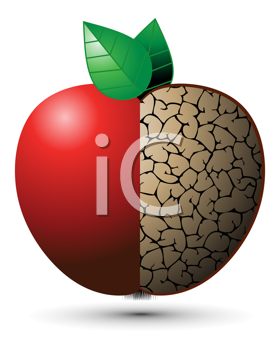Royalty Free Clipart Image of a Good and Bad Apple