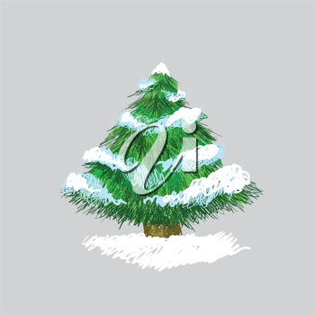 Illustration of hand drawn pine tree with snow, original sketch