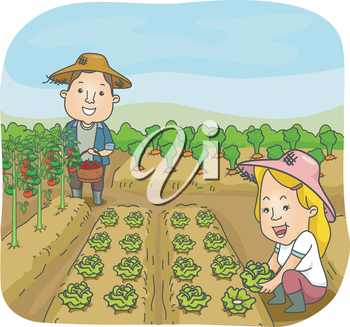 Illustration of a Man and a Woman Harvesting Fruits and Vegetables from Their Garden