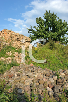 Royalty Free Photo of a Green Field and a Rocky Wall