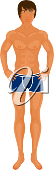 Illustration sexy muscular guy isolated -vector