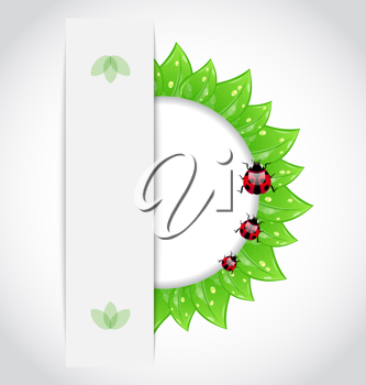 Illustration eco green leaves with ladybugs - vector