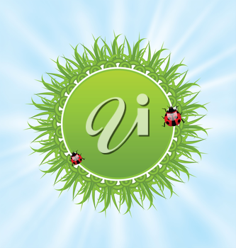 Illustration spring freshness card with grass and ladybugs - vector