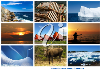 Royalty Free Photo of Pictures of Newfoundland