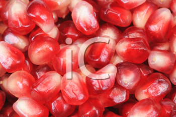Royalty Free Photo of Pomegranate Grains