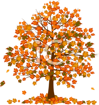 Royalty Free Clipart Image of an Autumn Tree