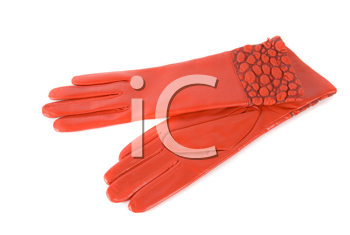 red modern female leather gloves isolated on a white