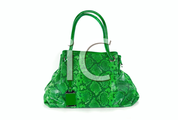 Royalty Free Photo of a Green Handbag