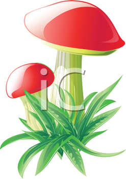 Royalty Free Clipart Image of Mushrooms and Grass