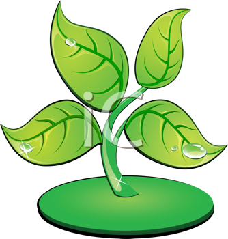 Royalty Free Clipart Image of a Green Leafy Plant