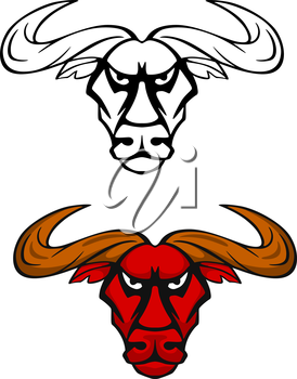 Attack bull head for team mascot or emblem design