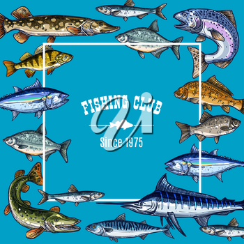 Fishing club vector sketch poster for fisher members. Frame retro design template with ocean or sea fishes tuna, marlin and salmon, herring and trout, bream or pike and sheatfish on blue background