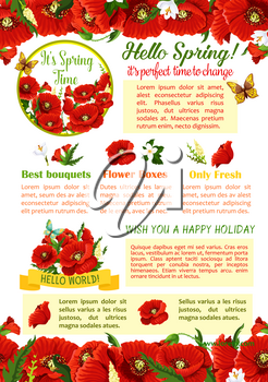 Hello Spring floral poster template. Springtime holidays greetings with flower bouquet of poppy, crocus and jasmine branches with green leaves, decorated by ribbon banner and floral border