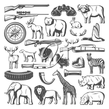 Hunting equipment and wild animals icons. Vector rifle gun, zebra and giraffe, elephant and rhino, duck and elk, crossbow and trap, bear and buffalo, hunting dog, knife and hippo, compass, binoculars
