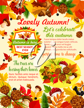 Autumn season banner template with fall nature leaf and mushroom. Autumn maple leaves, september foliage of chestnut, oak tree with acorn, cep and amanita mushroom, briar and rowan berry poster design