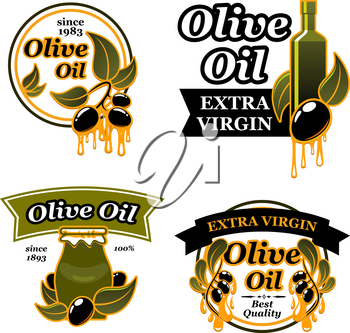 Olive oil label set with black olive fruit. Ripe olives with green leaf and drop of oil, ceramic jug of extra virgin oil isolated vector badge for bottle sticker, organic farm trademark design