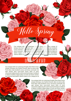Hello Spring floral poster for springtime greeting card or season holiday wishes. Vector red roses and pink flowers bunches of blooming garden blossoms and flourish ribbons in bouquets design