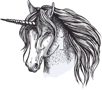 Unicorn head sketch icon of fairy tale horse. Vector magic and mystic horse with horn muzzle with waving mane for equine sport or equestrian races and contest exhibition design