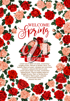 Welcome Spring floral banner with rose flower bouquet and ribbon. Red and pink flower of rose frame with green leaf branch, floral bud and greeting wishes for Spring Holiday Celebration design