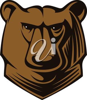 Cartoon illustration of a big brown bear head with glistening eyes staring directly at the viewer, vector on white
