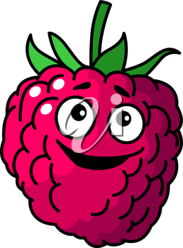 Goofy little cartoon raspberry fruit with a happy smile and green stalk isolated on white