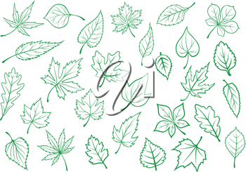 Green forest and field leaves icons in outline style for ecology and botany design