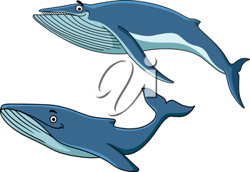 Blue cartoon whales swimming underwater with their tails, vector illustration on white
