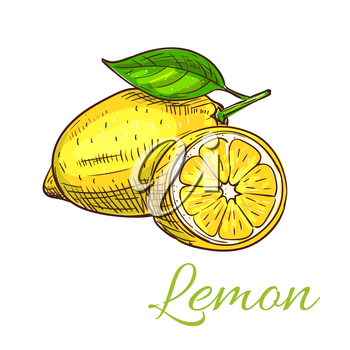 Lemon. Isolated citrus fruit whole and half slice with leaf. Lemon product emblem for juice or jam label, packaging sticker, grocery shop tag, farm store