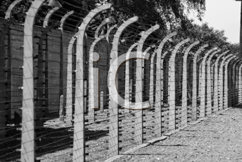 Black and white - Wire fence in Auschwitz concentration camp in Poland