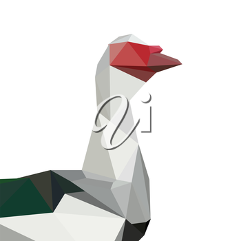 Illustration of origami muscovy duck isolated on white background