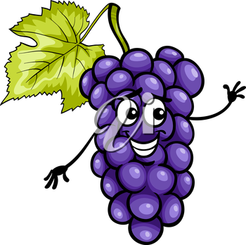 Cartoon Illustration of Funny Blue or Black Grapes Fruit Food Comic Character