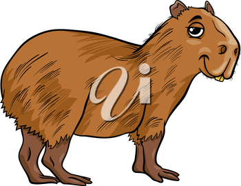 Cartoon Illustration of Funny Capybara Animal