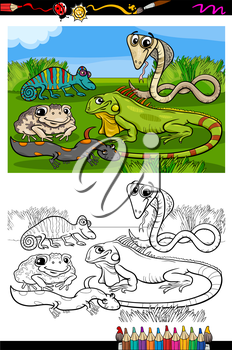 Coloring Book or Page Cartoon Illustration of Black and White Funny Reptiles and Amphibians Group for Children